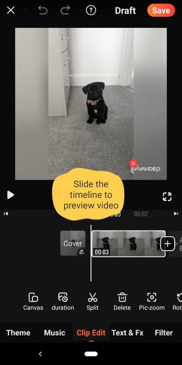 Viva Imagen de video