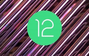 Google prepara grandes funciones relacionadas con los juegos para Android 12